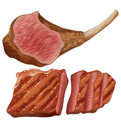Grilled meat on white background vector
