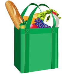 groceries vector image