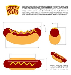 Hot dog infographics standard reference sizes of vector