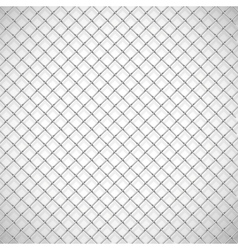 texture cage vector image