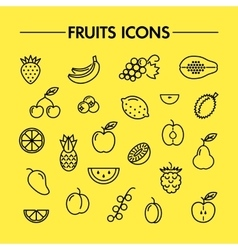 Fruits and berries line icons vector image vector image