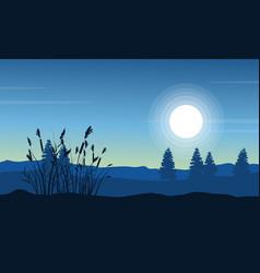 Silhouette of coarse grass on desert landscape vector