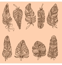 Hand Drawn Doodle Feather Set vector image vector image