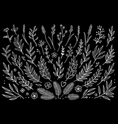 Tree branches set in chalkboard style vector