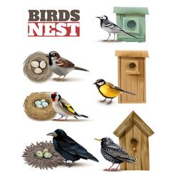 birds nests realistic set vector image