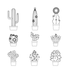 Cactus thin line icon set vector