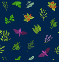 cartoon color herbs spices seamless pattern vector image