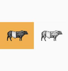 domestic cow farm animal vintage sketch for shop vector image
