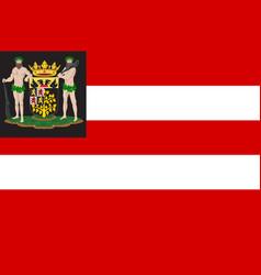 flag of hertogenbosch netherlands vector image