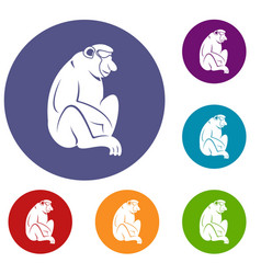 Orangutan icons set vector