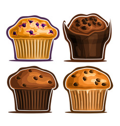 Set assorted muffins vector