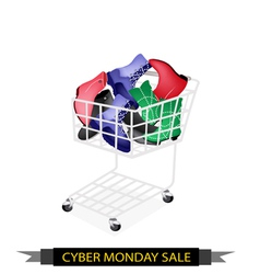 Women Shoes in Cyber Monday Shopping Cart vector image