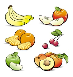 drawing set of different color fruits vector image
