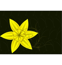 Daffodils in a garden vector