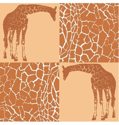 Giraffe patterns for wallpaper vector