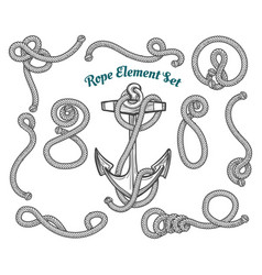 hand drawn rope element set vector image