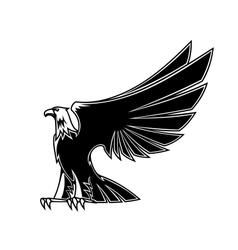 Powerful and majestic eagle vector image