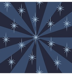 Starry night pattern vector image