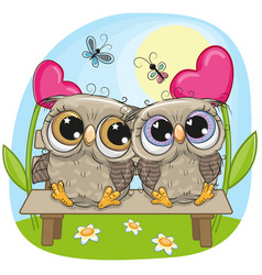 valentine card with owls on a bench vector image