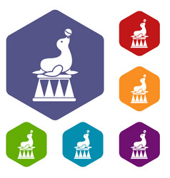 circus seal with a ball icons set vector image