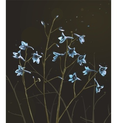 Romantic Wild Flowers Composition on Dark vector image vector image