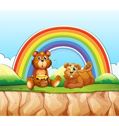 Bears and rainbow vector image