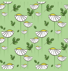 floral pattern with chamomiles and green vector image