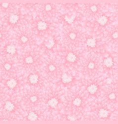 pink chrysanthemum seamless background vector image