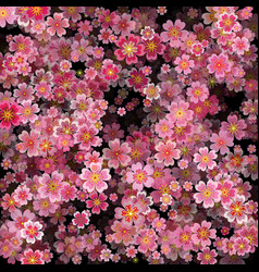 Sakura blossoms background with 3d effect vector
