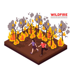 Wildfire isometric vector