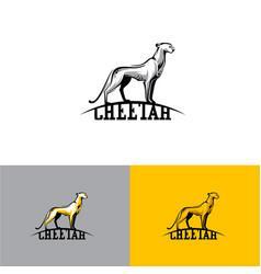 logo cheetah eps10 vector image vector image