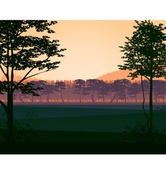 Background landscape with woods vector