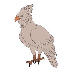 bird in flight color vector image