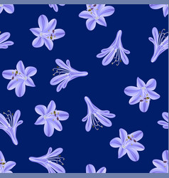 Blue purple agapanthus on navy blue background vector