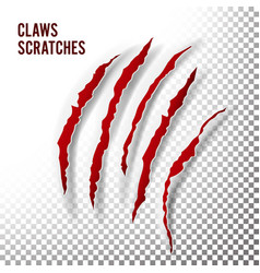 Claws scratches claw scratch mark bear or vector