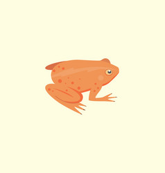 frog cartoon isolated vector image