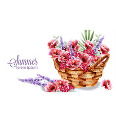 poppy and lavender flowers in a basket watercolor vector image