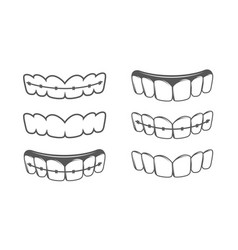 Set teeth isolated on a white background vector