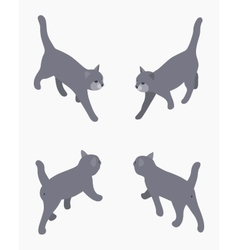 Isometric gray walking cat vector image