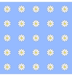 pattern daisies vector image