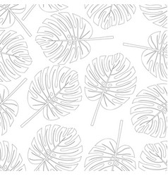 Philodendron monstera leaf seamless on white vector