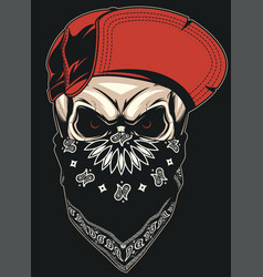 skull in a red cap vector image