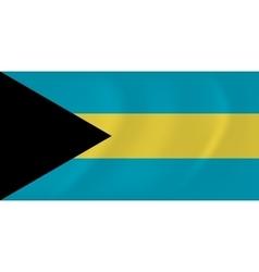 Bahamas waving flag vector image