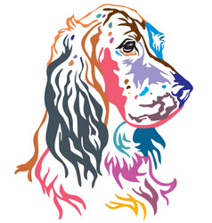 colorful decorative portrait of dog english vector image