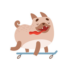 cute happy pug dog riding skateboard funny vector image