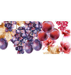 grapes watercolor card autumn fall background vector image