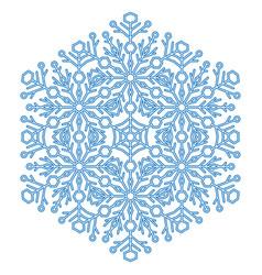 pretty round blue snowflake vector image