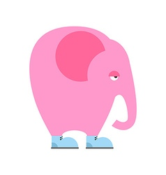 Big pink elephant in shoes Sad animal with trunk vector image