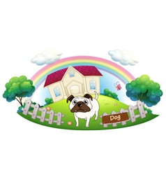 A white bulldog inside the fence with a house at vector image