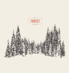 pine forest hand drawn sketch vector image vector image